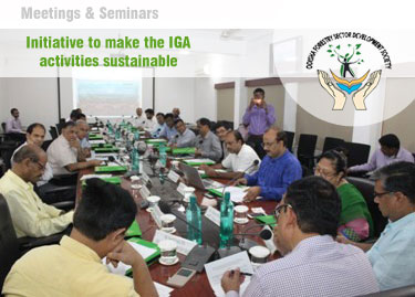 OFSDS Meeting : Initiative to make the IGA activities sustainable